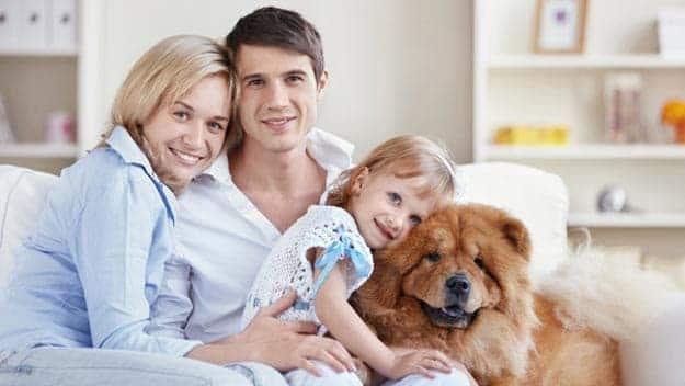 Wills & Trusts dog-young-family Direct Wills Far Cotton